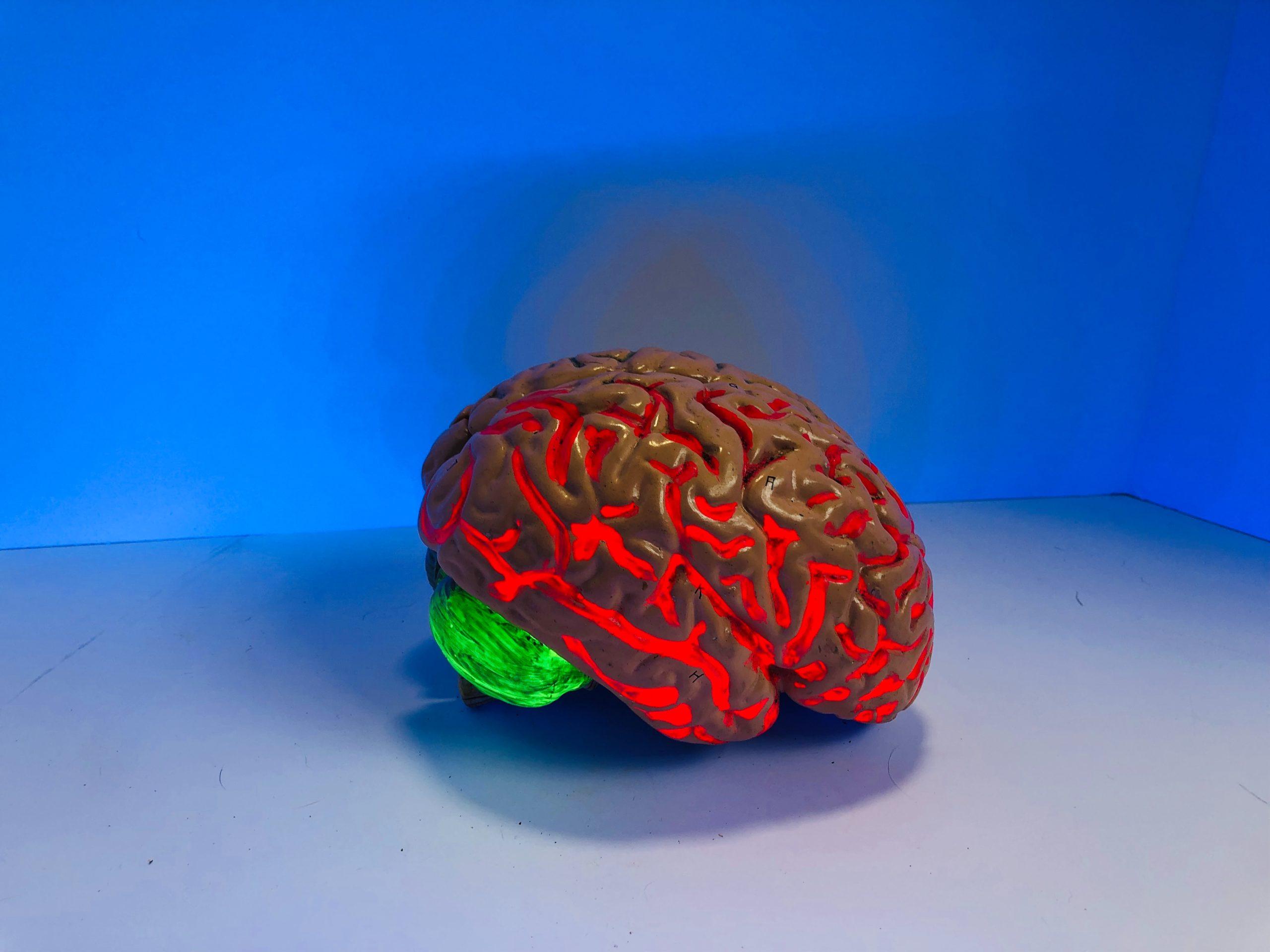 Integratori: quale ruolo possono avere nella fisiologia dell'invecchiamento cerebrale