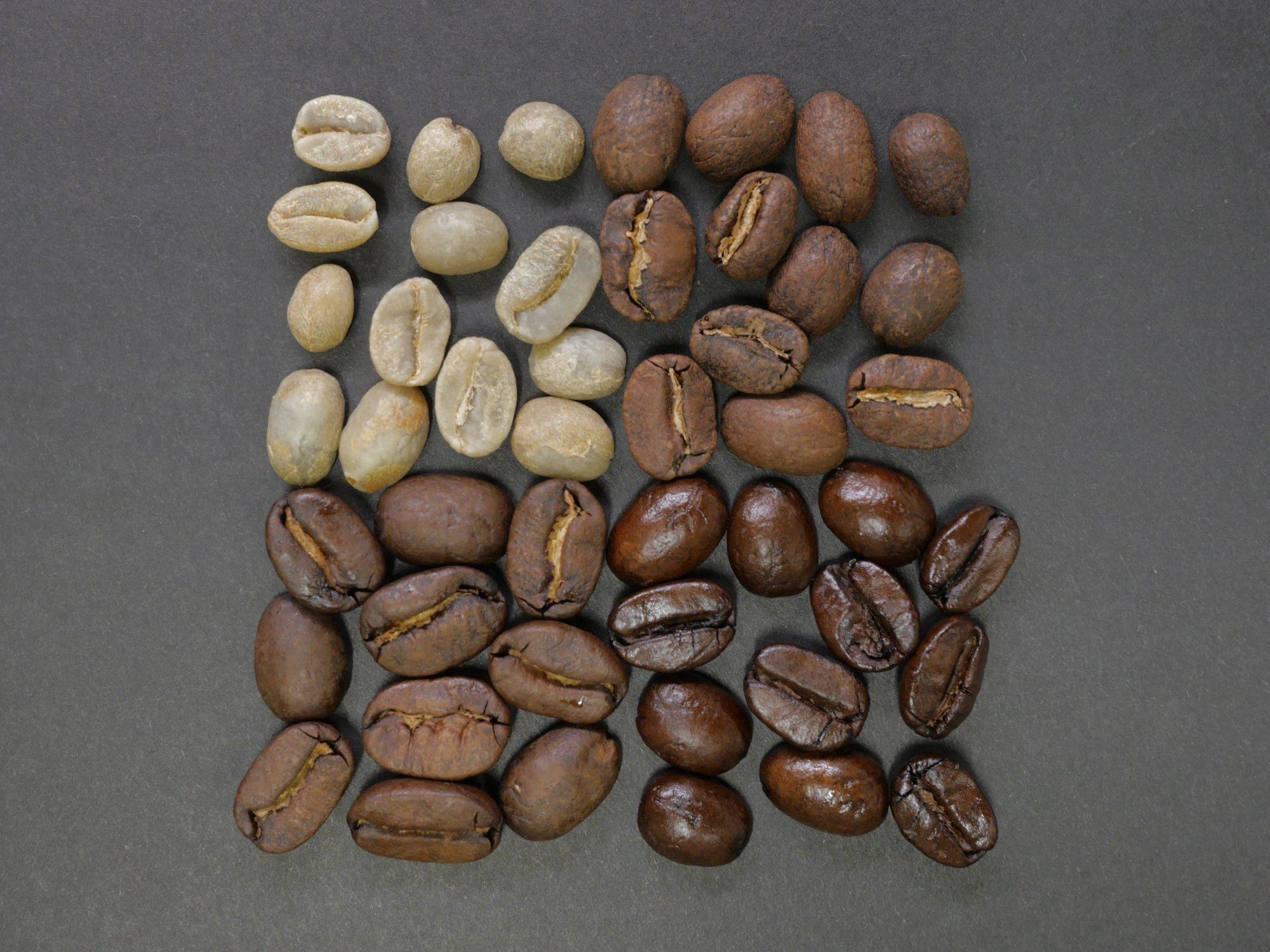 Coffee silverskin